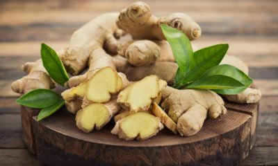 Ginger Can Help in Reducing Cancer Cells Without Affecting Normal Healthy Cells - 2