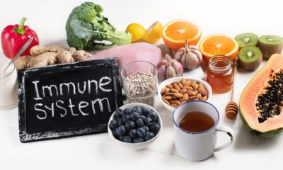 10 Foods to Eat to Keep the Immune System Healthy
